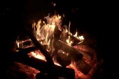 Woodlife-Fire2